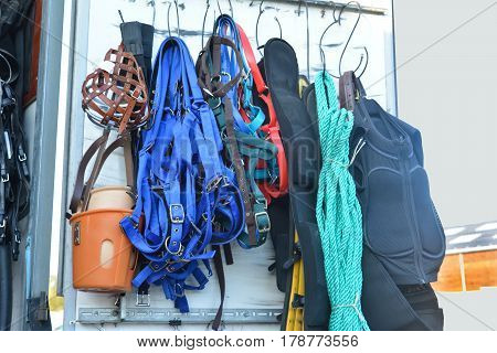 Horse riding equipment for sale. halter equipment