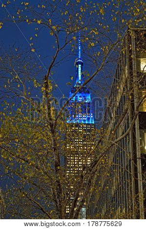 A night view of the Empire State Building.
