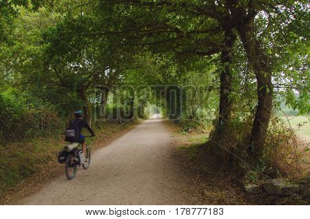 A cyclist is making the camino de santiago riding a bicycle. blurred motion