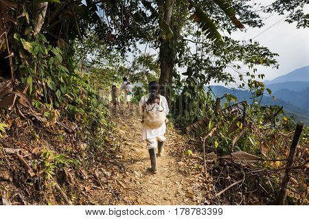 Sierra Nevada de Santa Marta Colombia - March 8 2014: Kogi family walking in a trail in the forest in the Sierra Nevada de Santa Marta Nevada
