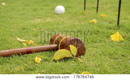 Croquet Mallet and Ball with Hoops. Outdoor activity games on a grass.