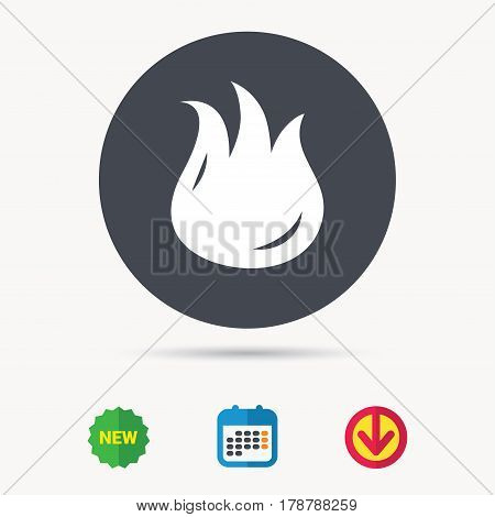 Fire icon. Blazing bonfire flame symbol. Calendar, download arrow and new tag signs. Colored flat web icons. Vector