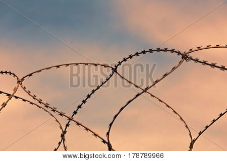Barbed wire on sunset sky background taken closeup.
