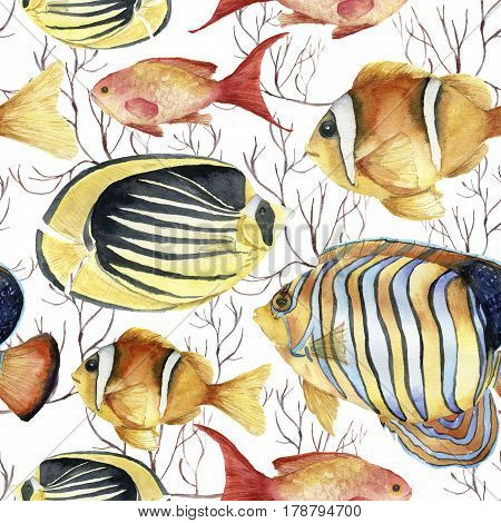 Watercolor tropic sea pattern. Hand painted tropic fish: angelfish, butterflyfish, clownfish and coral isolated on white background. Underwater illustration