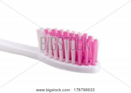 Closeup Of Toothbrush With Round Tip Bristle