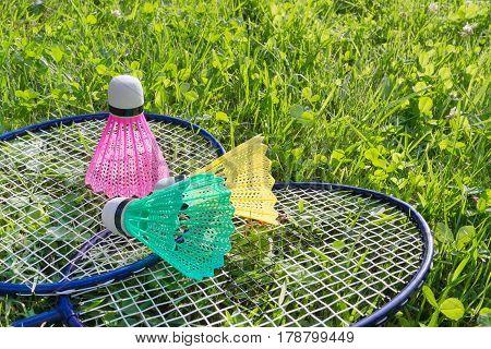 Badminton Rackets And Shuttlecocks On Grass
