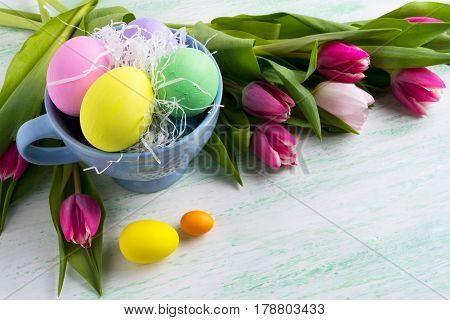 Easter Holiday Symbol Painted Eggs In Blue Cup And Pink Tulips Background