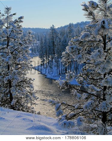 Spokane River Flowing Through a Snowy Forest