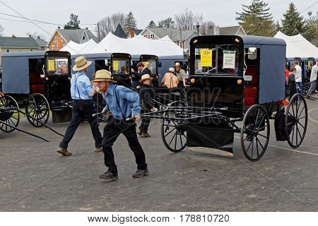 GAP PENNSYLVANIA - MARCH 25 2017: An Amish man moves a new carriage which is for sale at the annual