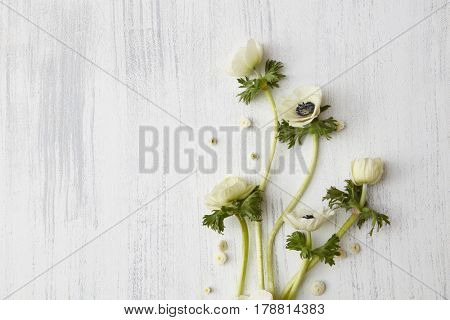 Composition of white flowers over concrete background, copy space