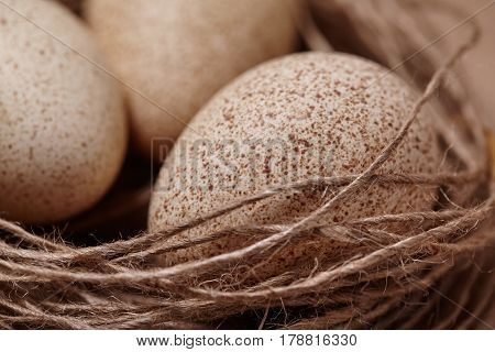 Happy Easter. Background with natural eggs in the nest. Beautiful holiday card