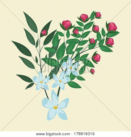 jasmine flower leaves ornament floral vector illustraiton eps 10