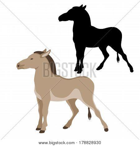 Kulan vector illustration style Flat set black silhouette