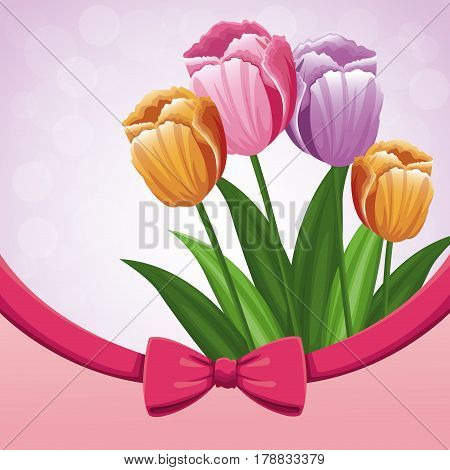 beauty tulips flower ribbon bow decorate vector illustration eps 10