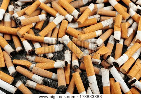 Closeup view of dirty cigarette butts