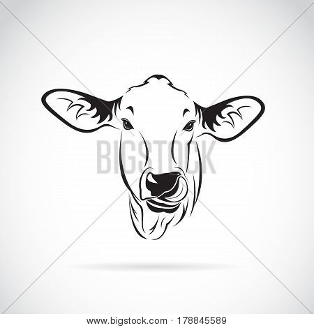 Vector of a cow head on white background. Calf