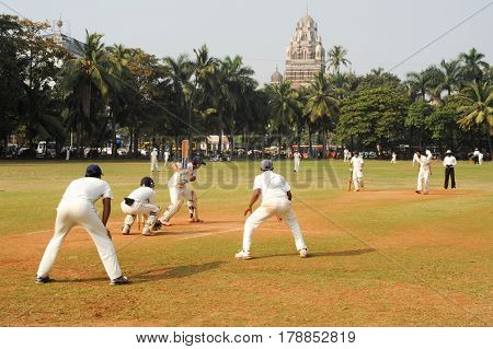 People Playing Cricket In The Central Park At Mumbai