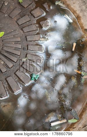 Dirty manhole cover with water and cigarettes