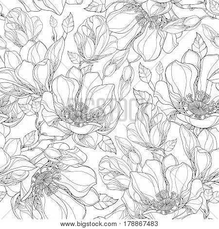 Vector seamless pattern with outline magnolia flower, ornate buds and leaves on the white background. Elegance floral background in contour style for summer design and coloring book.