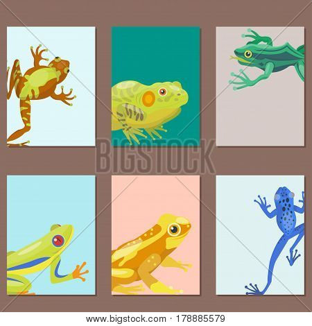 Frog cartoon tropical animal cartoon nature cards icon funny and isolated mascot character wild funny forest toad amphibian vector illustration. Graphic ecosystem croaking hop drawin.
