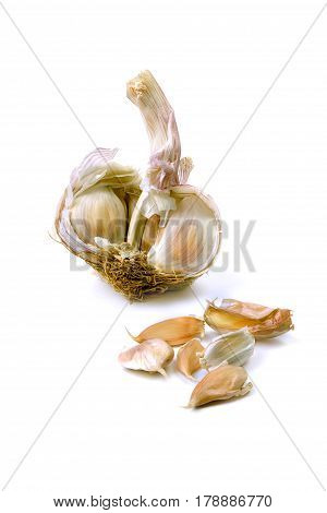 Garlic, cloves and cutted garlic clove isolated on white background