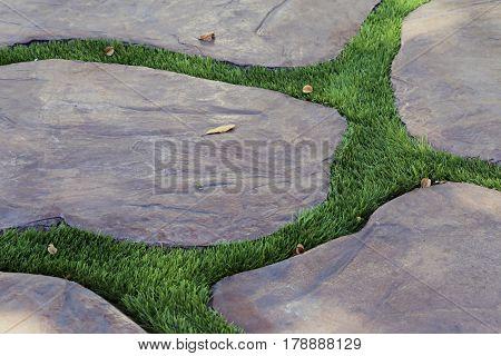 Green grass and rock block floor in garden closeup background