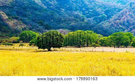 An example of cultural landscape in Costa Rica (Guanacaste region).