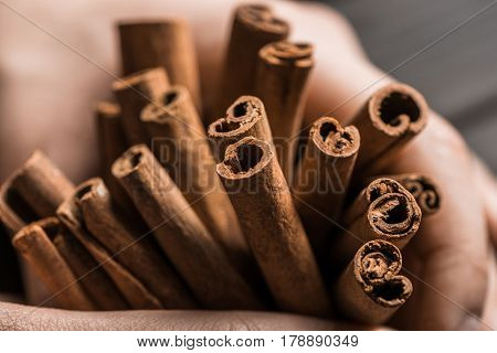 Close Up View Of Aromatic And Spicy Cinnamon Sticks In Hands