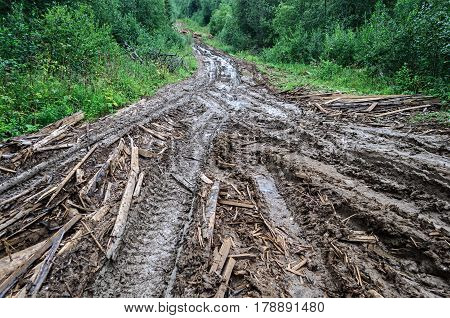 Dirty dirt road with broken wood boards through the forest