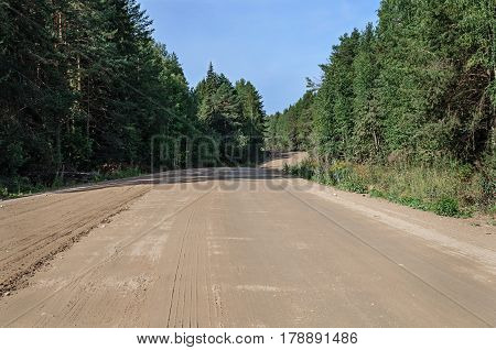 Country dirt road through the forest sunny summer day