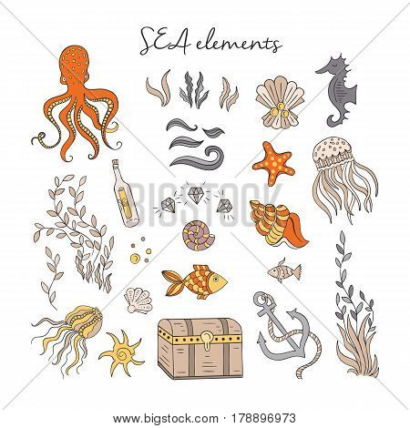 Vector Hand drawn vintage sea elements: octopus, fishes, dower chest, shells, anchor, jellyfish, water plant. Sea and ocean. Nautical and sea symbols isolated on white background. Hand drawn icons.