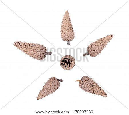 Isolated cones on a white background, object