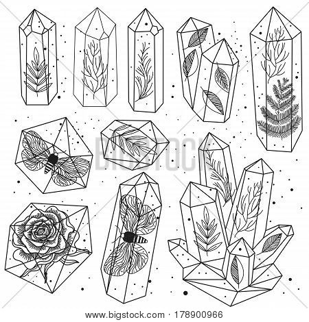 Set of hand drawn line art crystals and leafs moths rose inside gems isolated objects. Black and white transparent terrariums. Magic fairytale Halloween theme. Vector illustration.