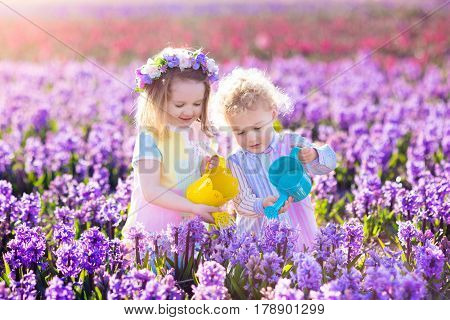 Children planting spring flowers in sunny garden. Little boy and girl gardener plant hyacinth daffodil snowdrop in flower bed. Gardening tools and water can for kids. Family working in the backyard.