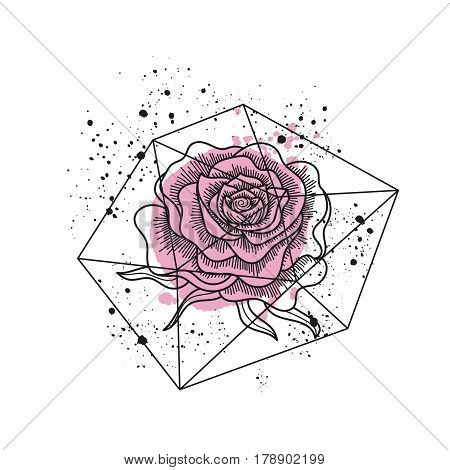 Black and white rose flower in polygonal terrarium isolated. Pink paint and ink black splashes. Line art tattoo style. Vector illustration.