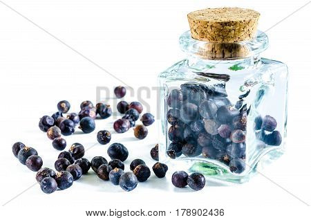 Dry juniper berries in glass bottle and heap of juniper near it isolated on white background. Closeup macro shot.