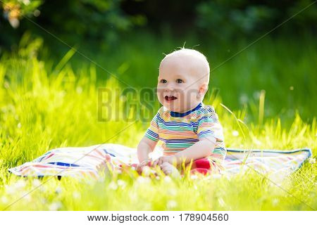 Adorable baby boy eating apple playing on colorful blanket in green grass. Child having fun on family picnic in summer garden. Kids eat fruit. Healthy nutrition for little child. Kid with apples.