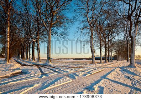 Crossroads Of Snowy Lanes
