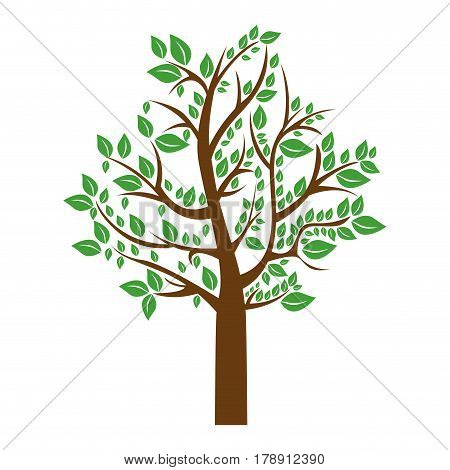 colorful tree with leafy branches vector illustration