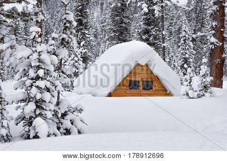 small house hidden under the snow in the forest full of snowdrifts