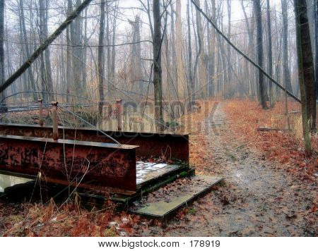 Über den Fluss und durch den Wald
