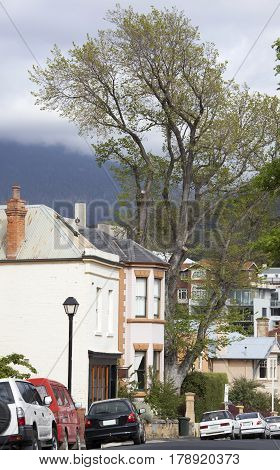 Houses of Battery Point residential district in Hobart town (Tasmania).