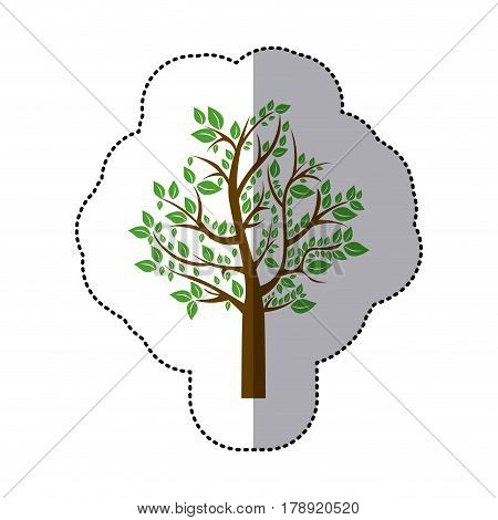 sticker colorful tree with leafy branches vector illustration