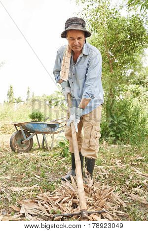 Middle-aged man busy with spring cleaning in garden