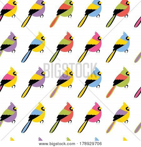 Vector seamless pattern texture with color birds