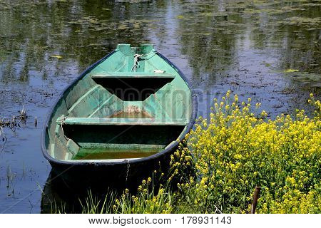 Rowboat moored between the rich coastal vegetation of the yellow flowers in the lake