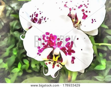 Watercolor pattern tropical flower Orchid. Vibrant illustration with realistic tropical flowers and leaves. Phalaenopsis. Exotic graphic background wallpaper. Stylized fabulous decorative backdrop.