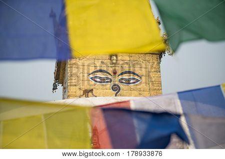 Monkey temple Buddha's eyes Kathmandu Nepal monkey
