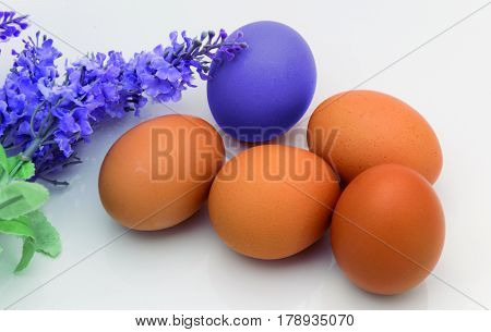 Violet egg. Simulation of violet dyeing by contact with flowers.