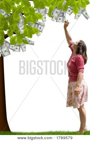 a lady reaching up to pick money from a tree poster